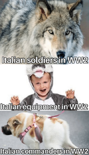 """This is why they """"lost"""" the war: Italian soldiers in WW2  talian equiioment in WW  0 This is why they """"lost"""" the war"""