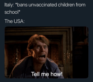 Children, School, and Italy: Italy: *bans unvaccinated children from  school*  The USA:  Tell me how! We must learn