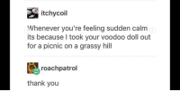 Tumblr being wholesome: itchycoil  Whenever you're feeling sudden calm  its because I took your voodoo doll out  for a picnic on a grassy hill  roachpatrol  thank you Tumblr being wholesome