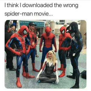 Dank, Hoe, and Memes: Ithink I downloaded the wrong  spider-man movie...  The Terrace  Parking C&D  entia Hall Spiderman Not Far from Hoe by cowabungapeppermil MORE MEMES