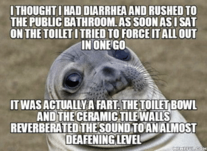 I didn't fully realize how loud it was until some guy in the next stall said 'God damn dude': ITHOUGHTIHAD DIARRHEAAND RUSHED TO  THE PUBLIC BATHROOM.AS SOON ASISAT  ON THE TOILETI TRIED TO FORCE IT ALLOUT  INONEGO  IT WAS ACTUALLY A FART. THE TOILETBOWL  AND THE CERAMICTILEWALLS  REVERBERATED THE SOUND TO ANALMOST  DEAFENING LEVEL  MEMEFUL COM I didn't fully realize how loud it was until some guy in the next stall said 'God damn dude'