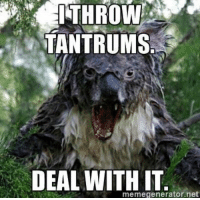 : ITHROW  TANTRUMS  DEAL WITH IT  memegenerator.net