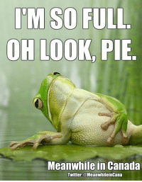 ~Lizzy: ITM SO FULL  OH LOOK, PIE  Meanwhile in Canada  Twitter:@MeanwhileinCana ~Lizzy