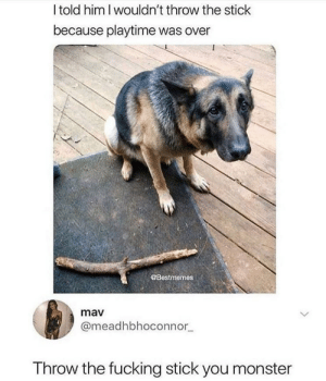 Fucking, Monster, and Him: Itold him I wouldn't throw the stick  because playtime was over  @Bestmemes  mav  @meadhbhoconnor  Throw the fucking stick you monster Throw the stick