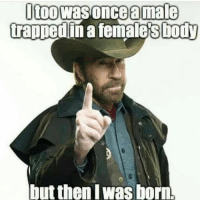 Memes, Quran, and Atheism: Itoowas once amale  trapped in a females body  Lut then Was born. Dangggg politicians gop conservative republican liberal democrat libertarian Trump christian feminism atheism Sanders Clinton America patriot muslim bible religion quran lgbt government feminism abortion traditional capitalism - Follow my main! @guns_are_fun_ - Tag your friends for more rightwing content ✨🙌🏻 - If you have any questions on my political views dm me! 💁🏻 -