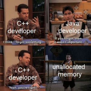 It just stays there: itriG  Java  C++  developer  developer  if you forgot, then  it wasn't important  I think I forgot something  5  unallocated  C++  memory  developer  Yeah, you're right It just stays there