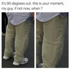This broke me: it's 90 degrees out. this is your moment,  my guy. if not now, when? This broke me