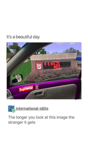 Beautiful, Image, and International: It's a beautiful day  Su  international-idjits  The longer you look at this image the  stranger it gets It's a beautiful day
