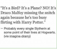 """I'm not a Drarry shipper, but this made me laugh.  ~Piper the Dauntless Wizard: """"It's a Bird? It's a Plane? NO! It's  Draco Malfoy missing the snitch  again because he's too busy  flirting with Harry Potter.""""  Probably every single Slytherin at  some point of their lives at Hogwarts.  (via imagine-drarry) I'm not a Drarry shipper, but this made me laugh.  ~Piper the Dauntless Wizard"""