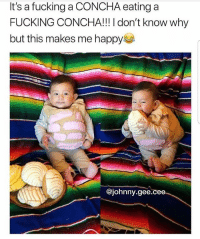 Fucking, Latinos, and Memes: It's a fucking a CONCHA eating a  FUCKING CONCHA!!! I don't know why  but this makes me happy  @johnny.gee.cee- Lmaoo 😂😂😂😂😂😂 🔥 Follow Us 👉 @latinoswithattitude 🔥 latinosbelike latinasbelike latinoproblems mexicansbelike mexican mexicanproblems hispanicsbelike hispanic hispanicproblems latina latinas latino latinos hispanicsbelike Picture by - @johnny.gee.cee