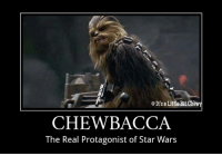 True Story!  ~Wook: It's a Little Bit Chewy  CHEWBACCA  The Real Protagonist of Star Wars True Story!  ~Wook