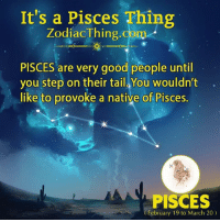 provoke: It's a Pisces Thing  Zodiac Thing.com  PISCES are very good people until  you step on their tail You wouldn't  like to provoke a native of Pisces  PISCES  (February 19 to March 20)