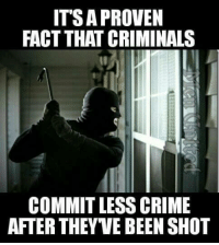 Memes, 🤖, and Criminations: IT'S A PROVEN  FACT THAT CRIMINALS  COMMIT LESS CRIME  AFTER THEYVE BEEN SHOT True story!