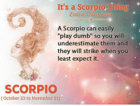 """Play Dumb: It's a Scorpio.  Thing  Zodiac Thing.com  A Scorpio can easily  """"play dumb"""" so you will  underestimate them and  they will strike when you  least expect it.  SCORPIO  (October 23 to November 21)"""