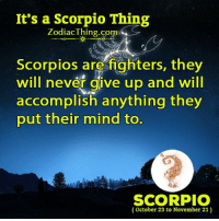 It's a Scorpio Thing  Zodiac Thing.com  Scorpios are fighters, they  will never give up and will  accomplish anything they  put their mind to.  SCORPIO  October 23 to November 21)