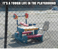 We're assuming this is the school of hard knocks?  Gym Memes: ITS A TOUGH LIFE IN THE PLAYGROUND We're assuming this is the school of hard knocks?  Gym Memes