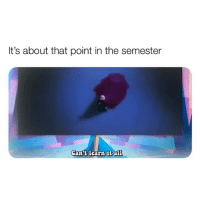 College, Finals, and Memes: It's about that point in the semester  Cantt learn it al1 Sometimes you just gotta say f*ck it all memesapp finals college