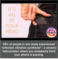 "Facts, Friends, and Head: IT'S  ALL  IN  YOUR  HEAD  FactPoint  68% of people in one study experienced  ""phantom vibration syndrome"" - a sensory  hallucination where you mistakenly think  your phone is buzzing. I feel it sometimes 📳 did you know fact point , education amazing dyk unknown facts daily facts💯 didyouknow follow follow4follow earth science commonsense f4f factpoint instafact awesome world worldfacts like like4ike tag friends Don't forget to tag your friends 👍"