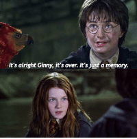 Memes, 🤖, and Basilisk: It's alright Ginny, it's over. It's just a memory.  Hermione Grangert Who do you prefer Ginny or Luna? - beautyandthebeast fantasticbeastsandwheretofindthem fantasticbeasts harrypotter harrypotterscenes hermionegranger lunalovegood ginnyweasley harrypotterandthechamberofsecrets chamberofsecrets basilisk