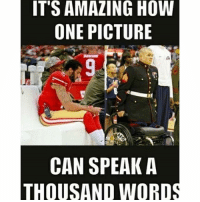America, Facebook, and Instagram: ITS AMAZING HOW  ONE PICTURE  CAN SPEAK A  THOUSAND WORD Kaepernick is nothing but a race baiting idiot who acts a fool for attention kaepernick trumpmemes liberals libbys democraps liberallogic liberal maga conservative constitution presidenttrump resist thetypicalliberal typicalliberal merica america stupiddemocrats donaldtrump trump2016 patriot trump yeeyee presidentdonaldtrump draintheswamp makeamericagreatagain trumptrain triggered CHECK OUT MY WEBSITE AND STORE!🌐 thetypicalliberal.net-store 🥇Join our closed group on Facebook. For top fans only: Right Wing Savages🥇 Add me on Snapchat and get to know me. Don't be a stranger: thetypicallibby Partners: @theunapologeticpatriot 🇺🇸 @too_savage_for_democrats 🐍 @thelastgreatstand 🇺🇸 @always.right 🐘 @keepamerica.usa ☠️ @republicangirlapparel 🎀 @drunkenrepublican 🍺 TURN ON POST NOTIFICATIONS! Make sure to check out our joint Facebook - Right Wing Savages Joint Instagram - @rightwingsavages