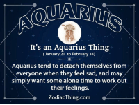 Being Alone, Work, and Aquarius: It's an Aquarius Thing  (January 20 to February 18)  Aquarius tend to detach themselves from  everyone when they feel sad, and may  simply want some alone time to work out  their feelings.  ZodiacThing.com