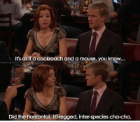 Memes, Mouse, and 🤖: It's as if a cockroach and a mouse, you know..  instag  Did the horizontal, 10-legged, inter-species cha-cha. {1x7} Thanks for 187k😘💙 -- Scene requested by @mrabbassibrahim1 himym howimetyourmother sitcom barneystinson neilpatrickharris