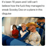 Instagram, Memes, and Scooby Doo: It's been 16 years and I still cant  believe how the fuck they managed to  sneak Scooby Doo on a plane in this  disguise @pubity is hands down the funniest account on instagram 😂