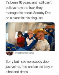 Scooby Doo, Sorry, and Dress: It's been 16 years and I still can't  believe how the fuck they  managed to sneak Scooby Doo  on a plane in this disguise  @BestMemes  @gothicdogsclub  Sorry but l see no scooby doo,  just velma, fred and an old lady in  a hat and dress