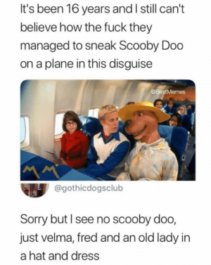 Dank, John Cena, and Memes: It's been 16 years and I still can't  believe how the fuck they  managed to sneak Scooby Doo  on a plane in this disguise  @BestMemes  @gothicdogsclub  Sorry but l see no scooby doo,  just velma, fred and an old lady in  a hat and dress THE NEW JOHN CENA by callum_macdougall MORE MEMES