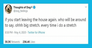 It's been a hot minute since we shared thoughts from our favorite doggo on Twitter -- Thoughts of Dog! #dogs #dogmemes #funnydogs #funnymemes #animalmemes: It's been a hot minute since we shared thoughts from our favorite doggo on Twitter -- Thoughts of Dog! #dogs #dogmemes #funnydogs #funnymemes #animalmemes