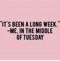 """Memes, 🤖, and Gia: """"IT'S BEEN A LONG WEEK  ME, IN THE MIDDLE  OF TUESDAY  EE  EL  WD  GIA  NMD  .0 E S  HE  ATU  NN  EI-F  E-.,0 Me every week fer sureeee 😅😅😅 @browneyes.thickthighs"""