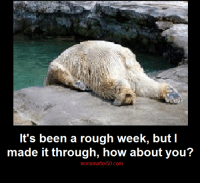 Memes, Rough, and 🤖: It's been a rough week, but I  made it through, how about you?  womenafter50