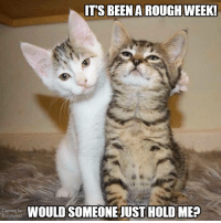 Memes, Rough, and 🤖: ITS BEEN A ROUGH WEEK!  WOULDSOMEONEMUSTHOLOMEO I gonna need a long weekend!