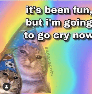 meirl: it's been fun,  but i'm going  to go cry now  sadasscats meirl