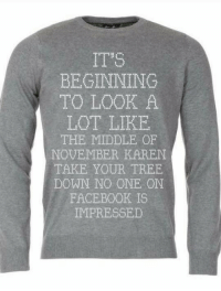 Facebook, The Middle, and Tree: IT'S  BEGINNING  TO LOOK A  LOT LIKE  THE MIDDLE OF  NOVEMBER KAREN  TAKE YOUR TREE  DOWN NO ONE ON  FACEBOOK IS  IMPRESSED  2