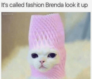Fashion, Look, and Brenda: It's called fashion Brenda look it up  dabmoms ? ? ?