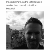 @vancityreynolds may be the GOAT: It's cold in Paris, so the Eiffel Tower is  smaller than normal, but still, so  beautiful. @vancityreynolds may be the GOAT
