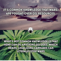 Memes, Common, and Cannabis: ITS COMMON KNOWLEDGE THAT WARS  ARE FOUGHT OVER OIL RESOURCES  WHAT'S NOT COMMON KNOWLEDGE IS THAT  HEMPCANDOANYTHING OIL DOES, WHICH  MEANS, LEGALIZING CANNABIS CAN  LITERALLY STOP WARS hemp for the win