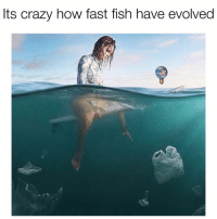 Crazy, Fish, and Dank Memes: Its crazy how fast fish have evolved When you die what do you want to be known for leaving behind? duhmerica (Pic cred @oggi_vacanze)