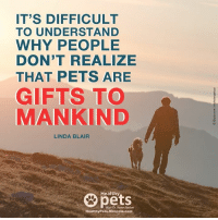 mercola: IT'S DIFFICULT  TO UNDERSTAND  WHY PEOPLE  DON'T REALIZE  THAT PETS ARE  GIFTS TO  MANKIND  LINDA BLAIR  Healthy  With Dr. Karen Becker  Healthy Pets Mercola.com