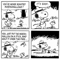 Fire, Memes, and United: IT'S EASY..  YOU VE NEVER ROASTED  MARSHMALLOWS ?  6-6  1987 United Feature Syndicate, inc  YOU JUST PUT THE MARSH-  MALLOW ON A STICK, AND  HOLD IT OVER THE FIRE  C2 This strip was published on June 6, 1987. 🔥