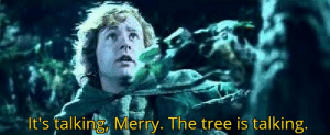 American soldier while travelling through the Vietnamese jungles (1969): It's falking, Merry. The tree is talking American soldier while travelling through the Vietnamese jungles (1969)