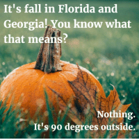 Fall: It's fall in Florida and  Georgia! You know what  that means?  Nothing  It's 90 degrees outside.