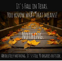 Fall: IT'S FALL IN TEXAS  YOU KNOW WHA THAT MEANS!  NOTHING  ABSOLUTELYNOTHING. IT'S STILL DEGREES OUTSIDE.