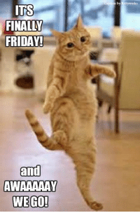 Exit, stage left!: ITS  FINALLY  FRIDAY!  and  AWAAAAAY  WE GO!  tion by Kittywork Exit, stage left!