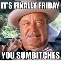 Sumbitch: IT'S FINALLY FRIDAY  YOU SUMBITCHES