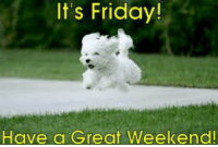 have a good weekend: It's Friday!  Have a Great Weekend!
