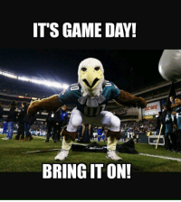 bring it on: ITS GAME DAY!  GL  BRING IT ON!
