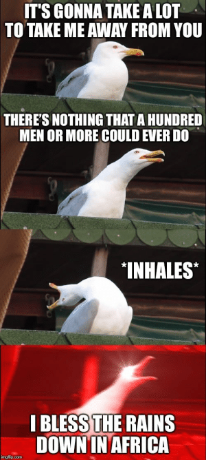 When the only line you know in the song comes on by Kabc FOLLOW HERE 4 MORE MEMES.: IT'S GONNA TAKE A LOT  TO TAKE ME AWAY FROM YOU  THERE'S NOTHING THAT A HUNDRED  MEN OR MORE COULD EVER DO  INHALES*  I BLESS THE RAINS  DOWNIN AFRICA  imgflip.com When the only line you know in the song comes on by Kabc FOLLOW HERE 4 MORE MEMES.