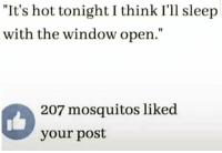 """Memes, Sleep, and 🤖: """"It's hot tonight I think I'll sleep  with the window open.""""  207 mosquitos liked  your post"""